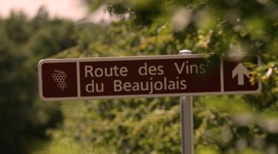 Il Gamay e il rituale sacro di bere vino in Beaujolais