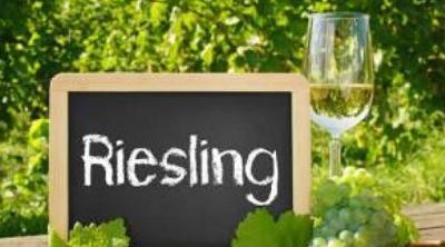 I Riesling e la grande annata 2019