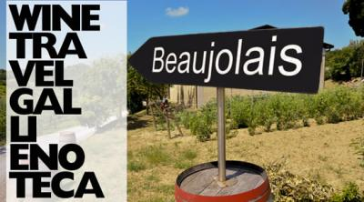 In viaggio con Galli Enoteca - Winetravel in Beaujolais 6.7.8. marzo