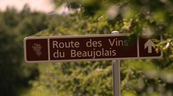 Beaujolais vino e paesaggi