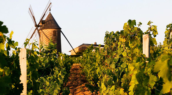 Moulin a Vent Beaujolais