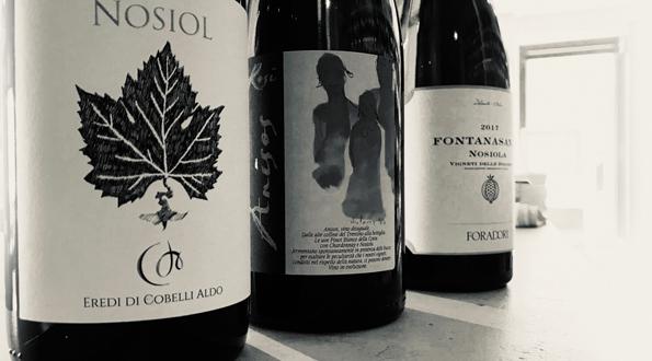 selezione vini trentini Nosiola