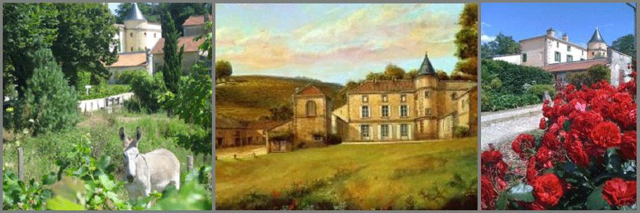Chateau La Grolet Cantina