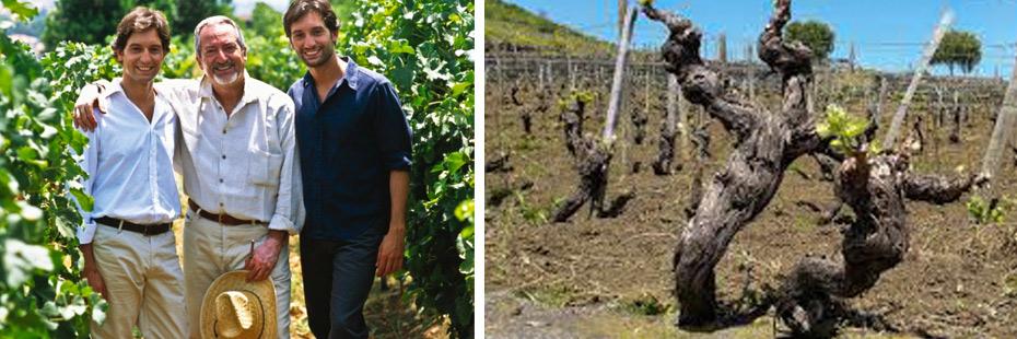 Cantina Benanti, vini di Sicilia