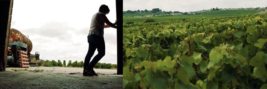 cantina Corbon Champagne Avize